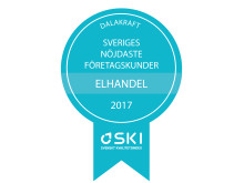 Medaljer SKI Elhandel B2B 2017
