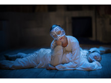 Solen och Nordstjärnan: Le Ballet des Nations