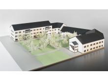Lindbackens skola