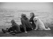 Inselmelodie: Tag am Meer
