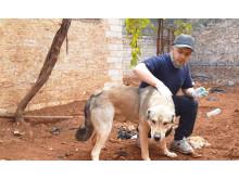 WTG-Syrien-Behandlung-Hund-3
