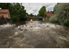 Simning Uppsala Triathlon 2017_foto Magnus Dickson