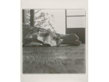 Tsumari Story No.1-29, 2012 (c) RongRong & inri
