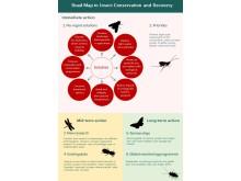 Aktionsplan Insektenschutz