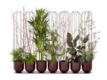 Cacti planter, design Anki Gneib