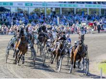 Dansk Hoppe Derby 2019