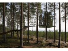 Tham & Videgård, Tree Hotel, 2010.