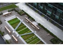 Physic Garden för Novartis, Basel, Schweiz