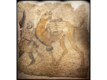 Fragment av gravmålning av man och kamel