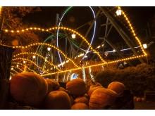 halloween_151124_orange_gang_4