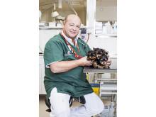 veterinär Jannis