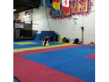 24 hour GrappleThon at Artemis BJJ in Bristol for charity One25