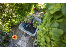 Nu kan alla stockholmare beställa hämtning av trädgårdsavfall