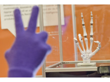 Robothanden från Högskolan i Halmstad