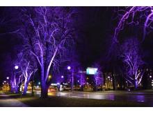 Belysning i Järnvägsparken.