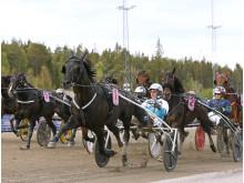 Sorbet och Örjan Kihlström vinner H.K.H Prins Daniels lopp