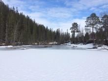 Utløpet av Spelremvatnet i Grane