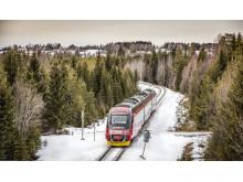 newtrain__Fåker