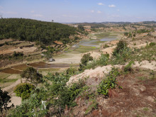 Landskap - Madagaskar