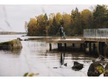 Familiehygge i Åsnens Nationalpark