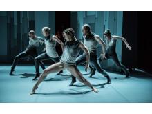 Eldfågeln med Dansk Danseteater