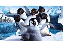 HAPPY FEET 2 - Fantastisk eventyr med dansende og syngende pingviner.