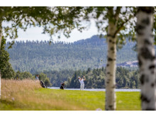 Golf i Ljusnedal