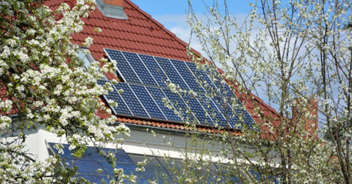 Stor ökning av solkraft i Sverige under 2019