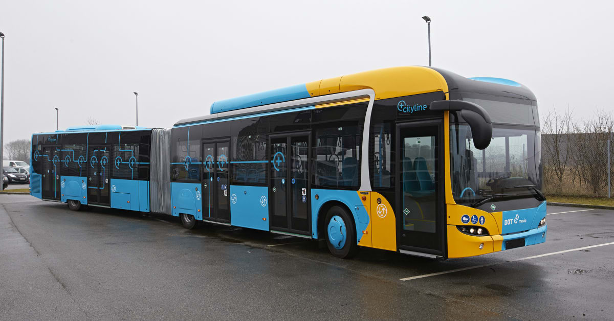danske ludere tog fra flensborg til hamborg lufthavn