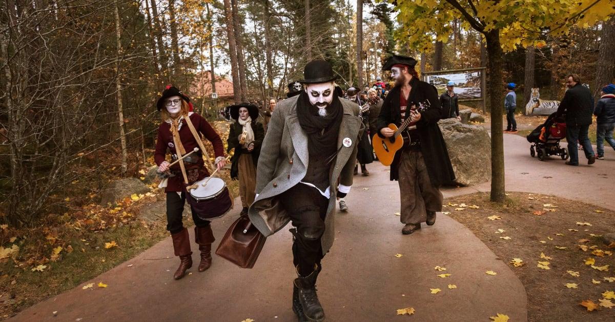 Det spökar på Kolmården! Välkommen på rysmysig pressvisning. 01059513ad7c2