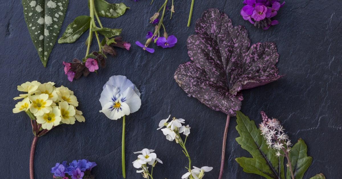 Trädgårdstrender 2016 - Blomsterfrämjandet