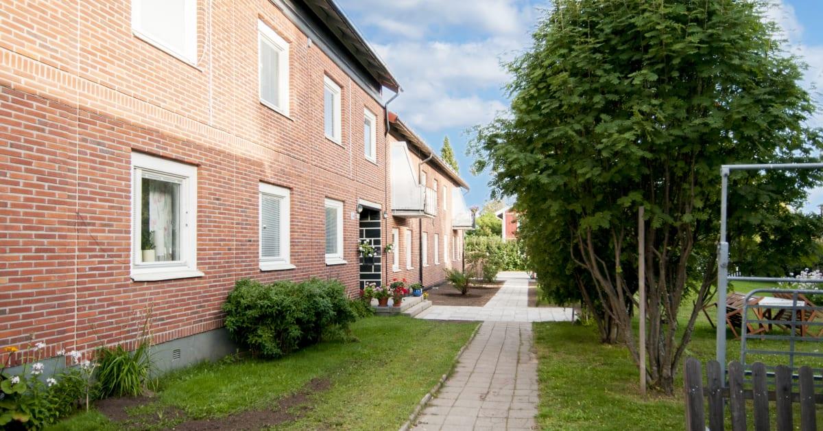 luleåbo
