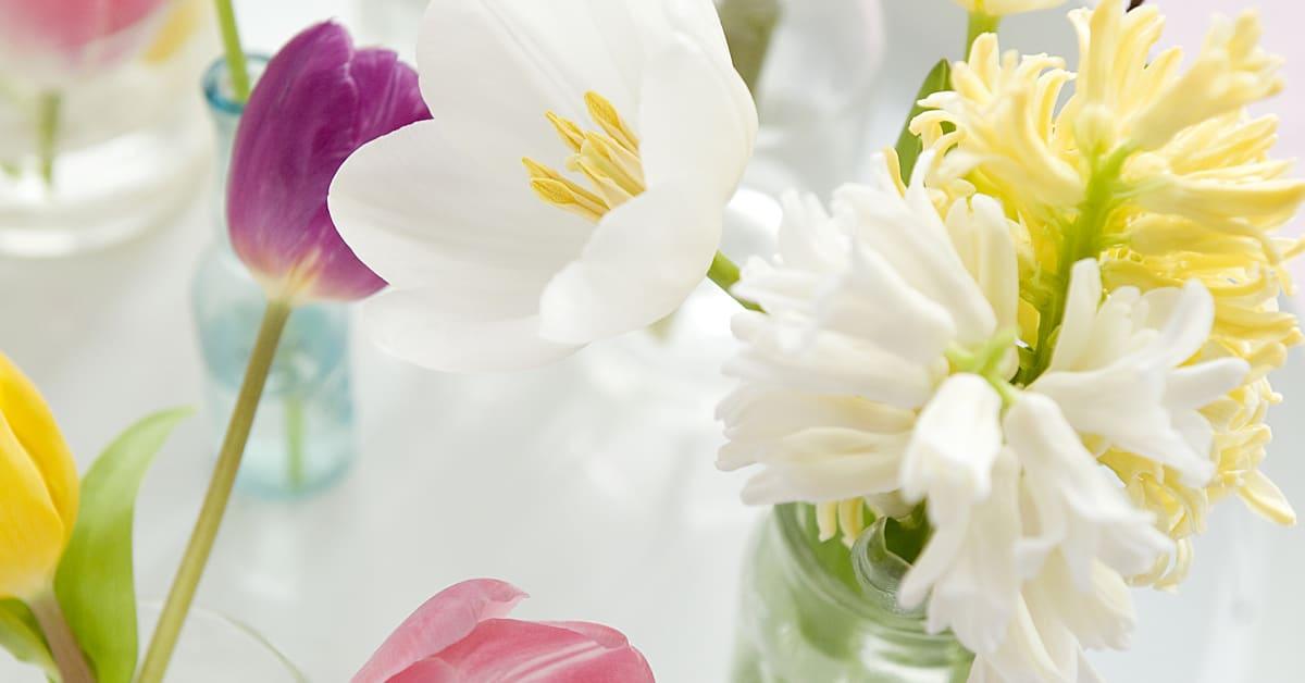 Bricka med tulpaner, pärlhyacint och hyacinter Blomsterfrämjandet