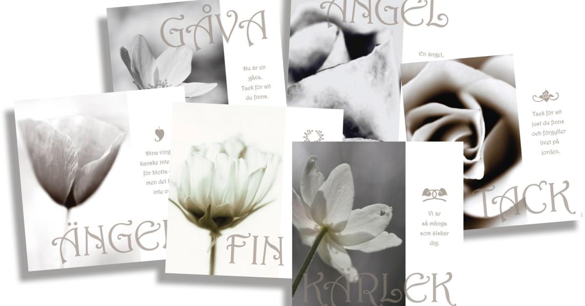 Ordrupgård kollektion følgesvend kort