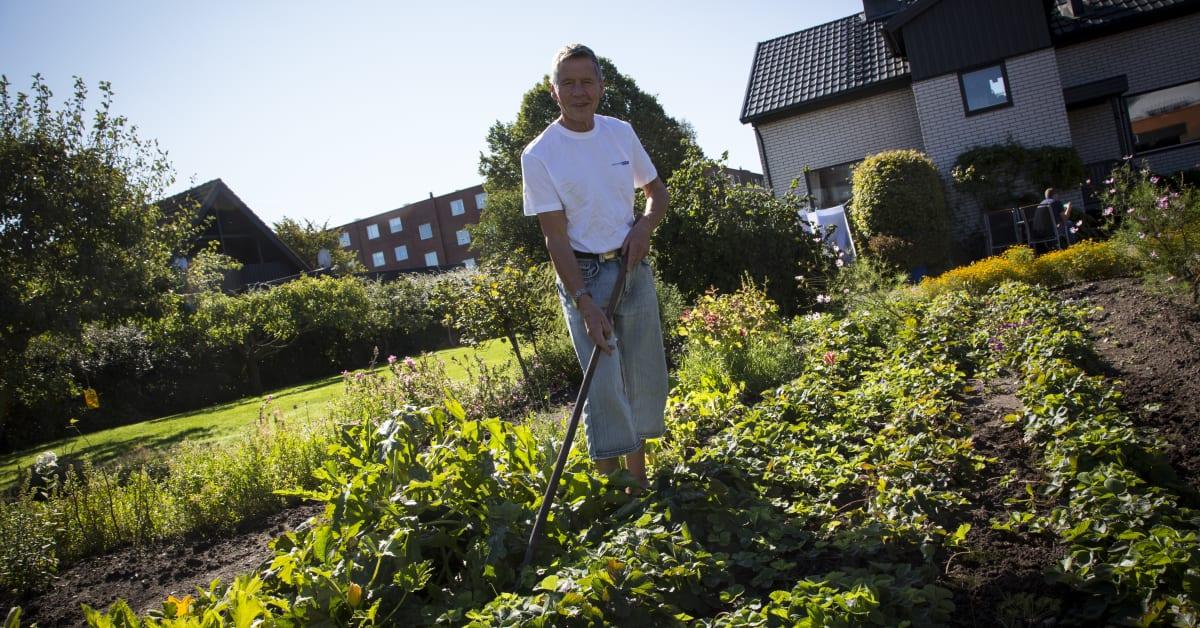 Pensionärspoolen söker arbetsglada pensionärer runtom i landet –... -  Pensionärspoolen i Sverige AB 5f9c2aced0c1a