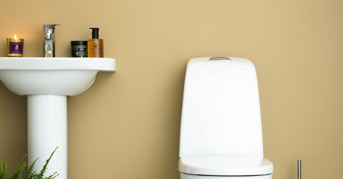 Villeroy & boch gustavsberg toalett   pressmeddelanden
