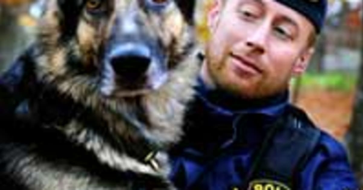 Orax arets polishund sparade 33