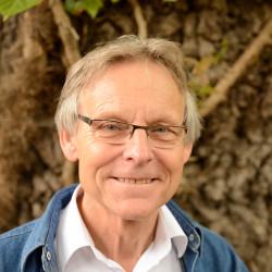 Julius Malmström
