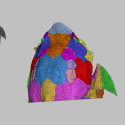 Computed microtomography
