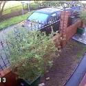 CCTV of Ali entering the park