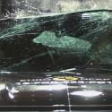 Euro NCAP Crash Test of Ford Mustang