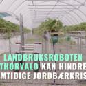 Landbruksroboten Thorvald kan redde jordbærene