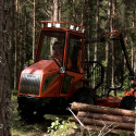 Woodtiger – en tiger för skogen