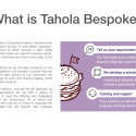 Tahola Company Overview