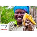Karriärmöjligheter för jobbsökare hjälper till att skapa jobb i Afrika