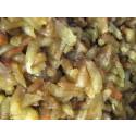 Sjöpung - Ciona intestinalis