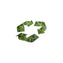 Miljöprojekt sammanför politiker och unga