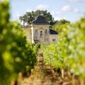 Exklusiv nyhet från André Lurton – eldsjälen bakom lyftet av vita viner från Bordeaux.