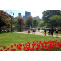 Uutta Tjäreborgilla - kaupunkimatkat Bostoniin
