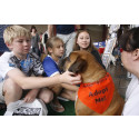 22nd Annual America's Family Pet Expo Facilitates the Adoption of 862 Animals from Southern California Shelters and Rescue Organizations